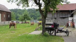 Für die Unterbringung von Pferden und Kutschen ist auf dem landwirtschaflichen Anwesen des Gasthofes ausreichend Platz.